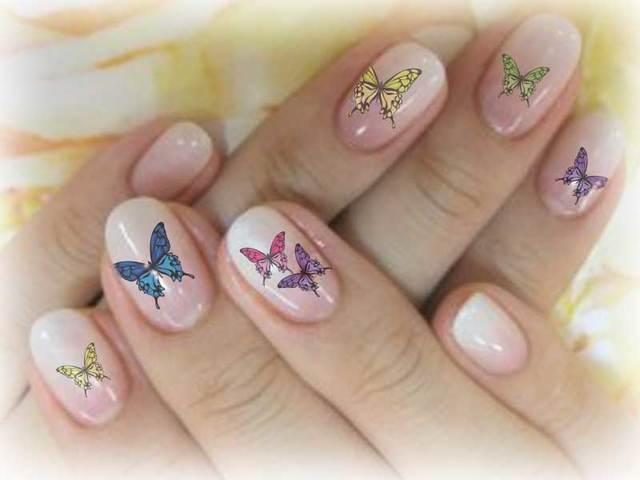 ネイルシール(アゲハ蝶)