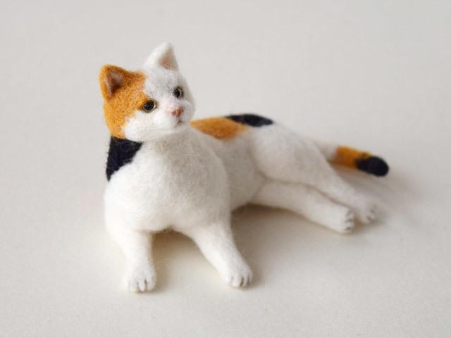 三毛猫の画像 p1_36