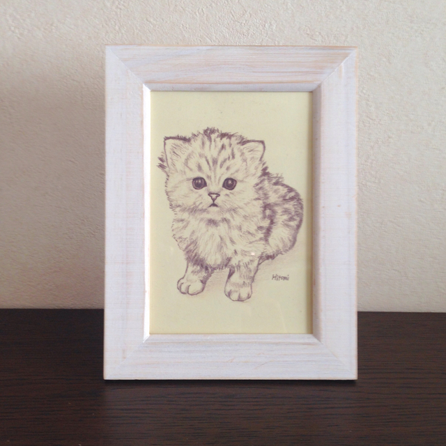 ポストカード チンチラの子猫 おすわり