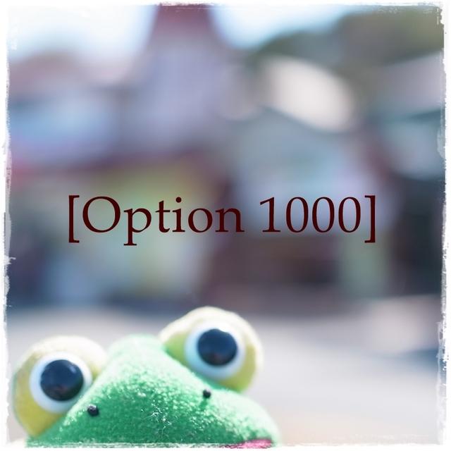 Option 1000