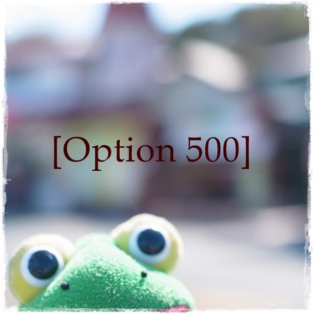 Option 500