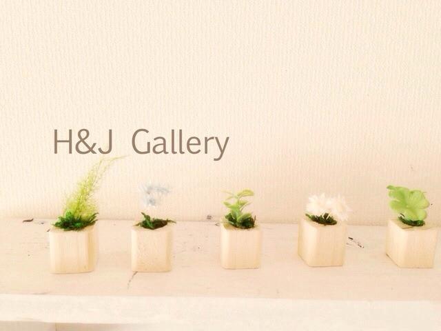 ◎更に小さな植木鉢 ナチュラル 5個セット