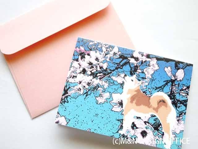 オリジナルイラスト柴犬と桜/ミニカード/ピンク