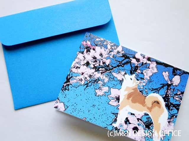 オリジナルイラスト柴犬と桜/ミニカード/ブルー