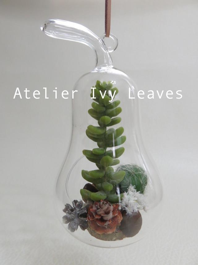 洋梨型ガラス器の多肉植物(アート)