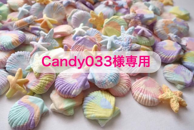 【Candy033様専用】手作りシェルパーツ...