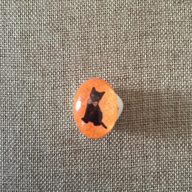 猫のリング 楕円