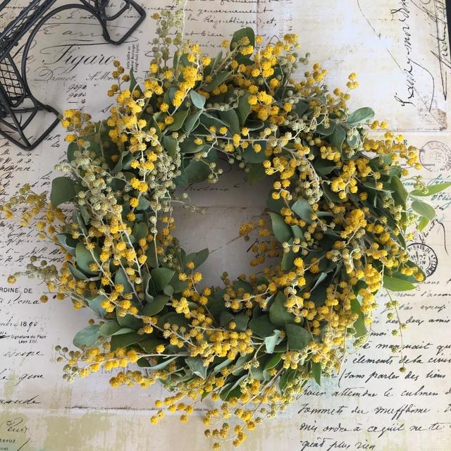 mimoza  Mサイズ   no.3