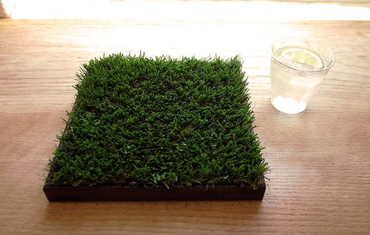 """緑(グリーン)の芝(植物)の小物入れトレイ""""midori-WA"""""""