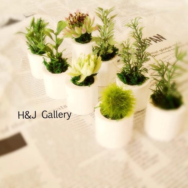 ☆小さな小さなちーさな植木鉢*5個セット 白丸
