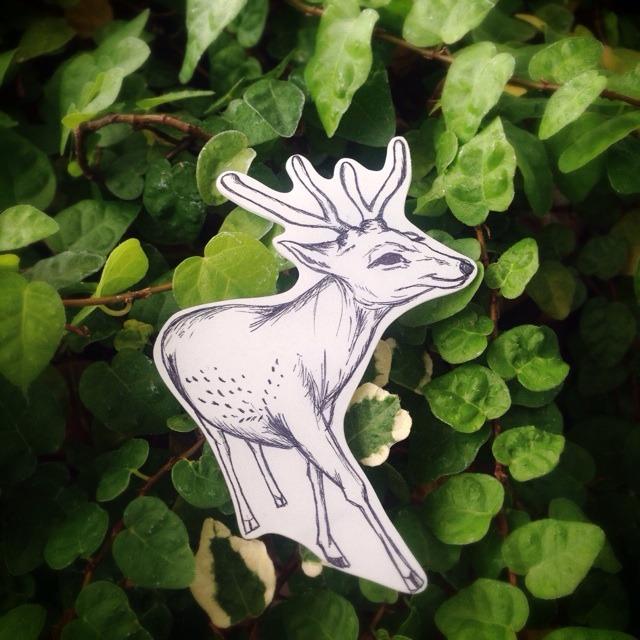 おさんぽ鹿