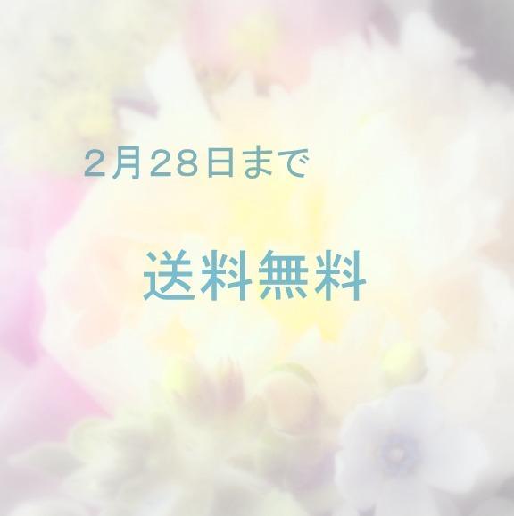 ◆2/28まで送料無料◆