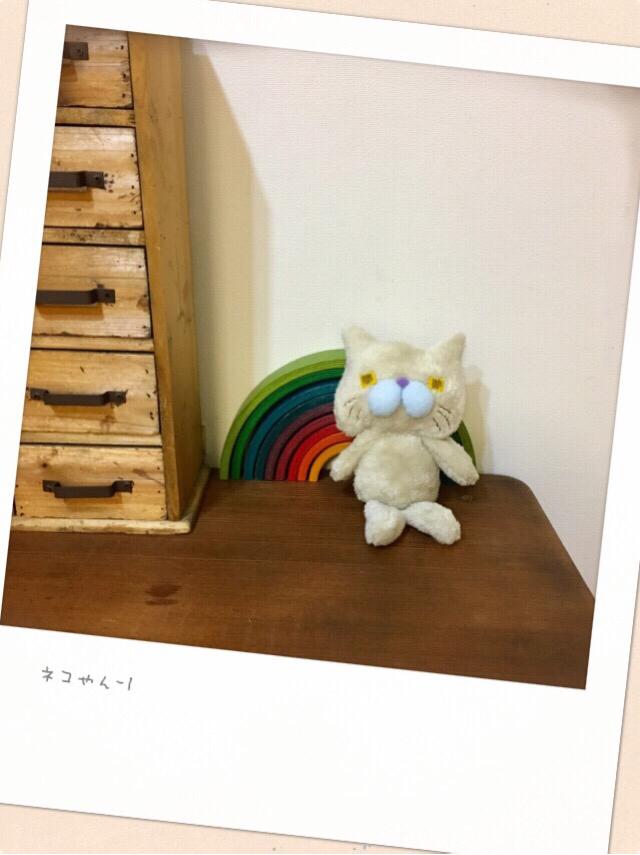 ネコやん-1