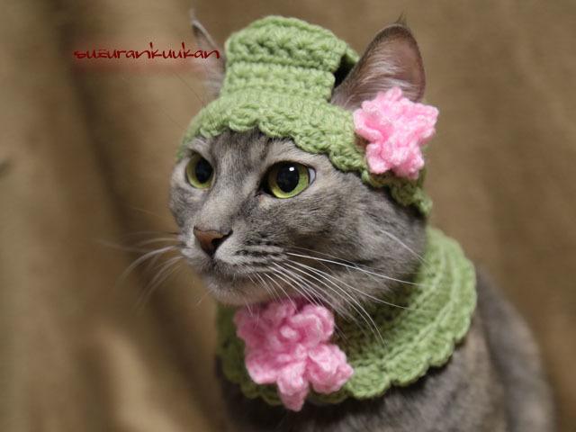【猫用】耳出るんです帽とケープセット...