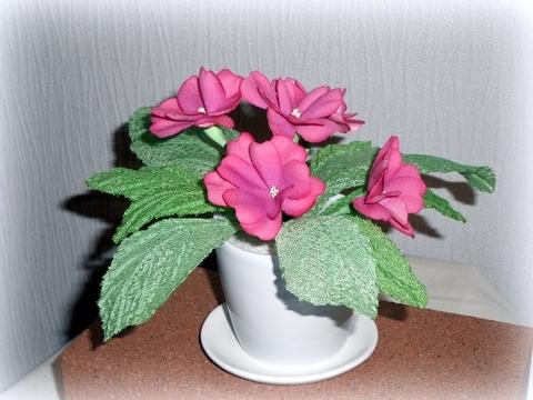 鉢植え ピンク