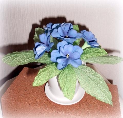 鉢植え ブルー