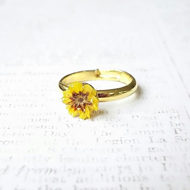 押し花のリング