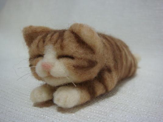 茶色トラちゃんの昼寝(猫)