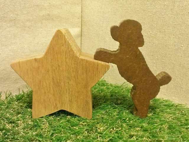 遊ぶトイプードル付☆星型の小箱☆犬種変更可能です☆