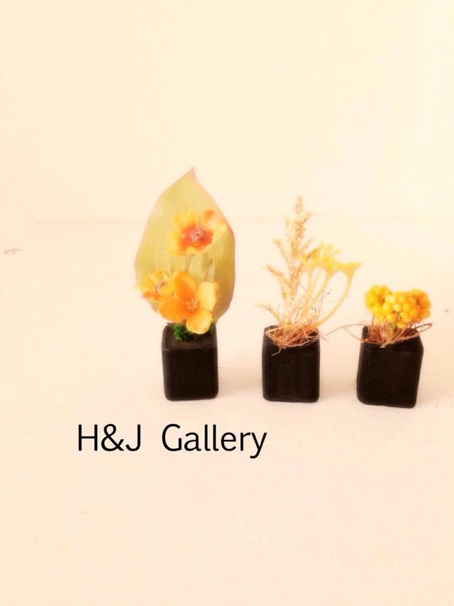 更に小さな植木鉢  ハロウィンカラー