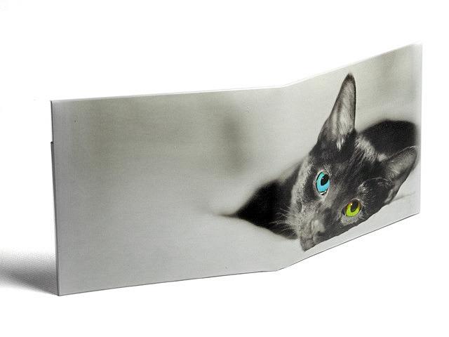 【送料¥90】 ストーンペーパーウォレット【黒猫オッドアイ】(仕様変更)