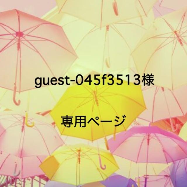 guest-045f3513様専用ページ