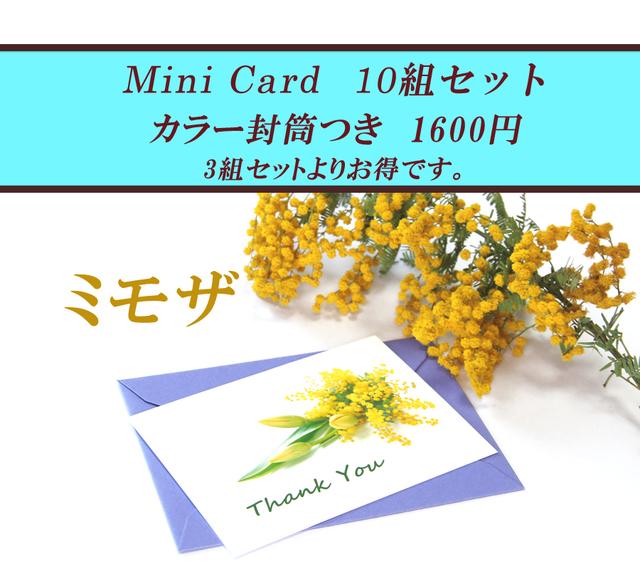 ★ミモザのミニカード(カラー封筒つき...