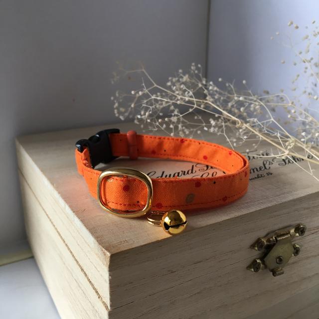 元気なビタミンカラー、オレンジの猫の首輪