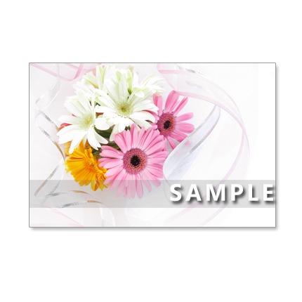 ☆★1107) ガーベラとバラの美しい花束 ポストカード5枚組 再販2