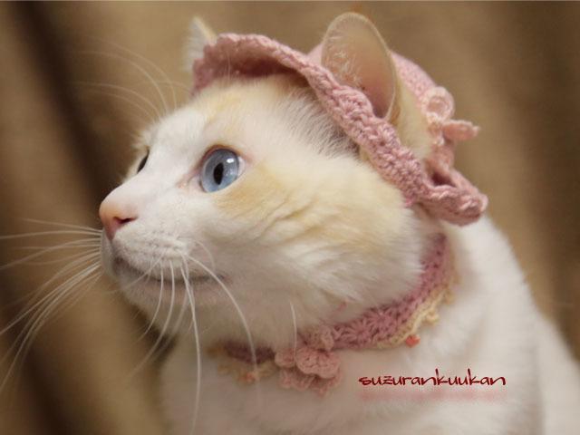 【犬猫用】スプリング帽子とピコット付...