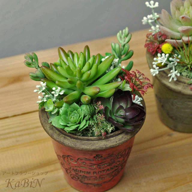 多肉植物・グリーン寄せ植えアレンジ 鉢/レッド