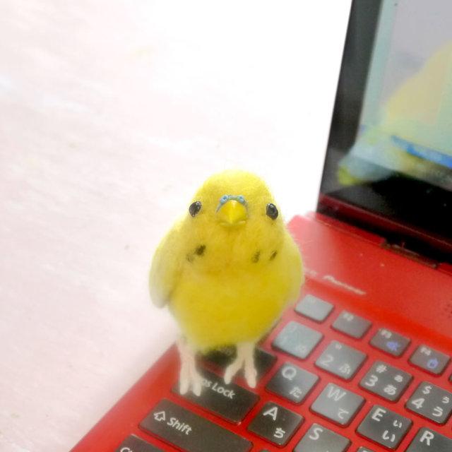 黄色いセキセインコ1羽(羊毛フェルトの...