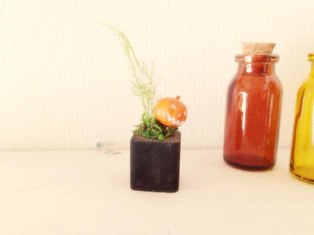 更に小さな植木鉢 ジャックランタン
