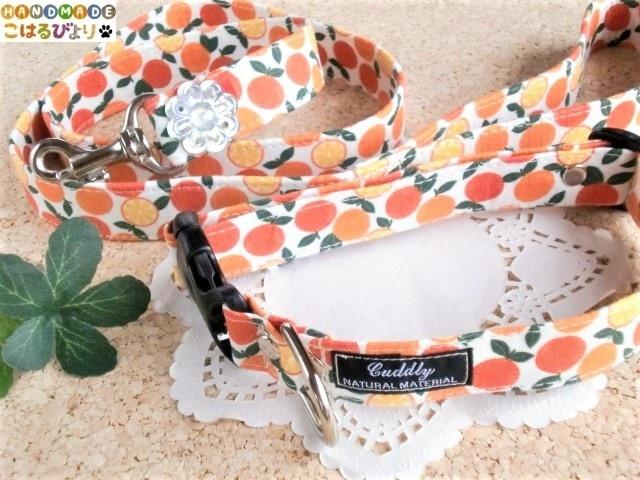 フレッシュなオレンジ柄の首輪とリード...