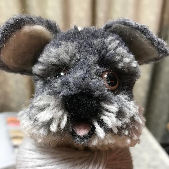 犬ぽんシュナウザー