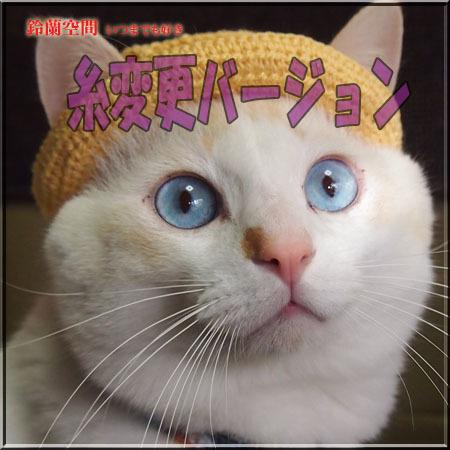 【猫用】編みカンカン帽 糸変更バージョン