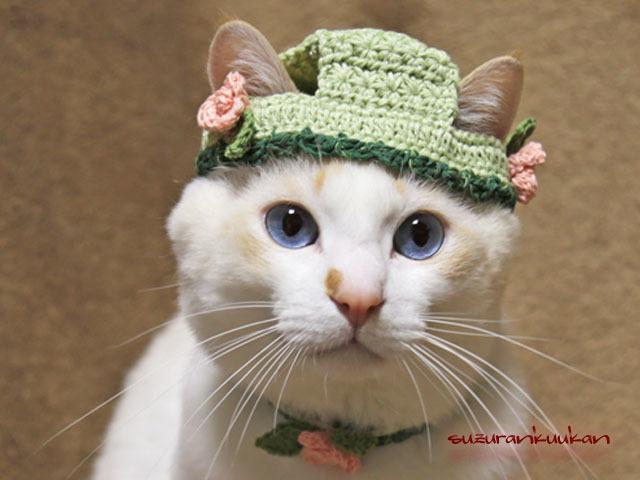 【猫用】帽子と首輪 バラ付きセット<...