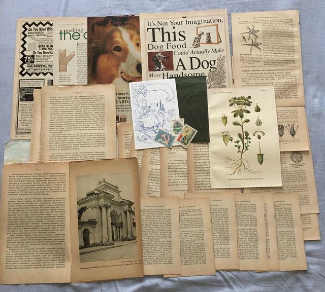 古書のページを中心に紙の詰め合わせ 20
