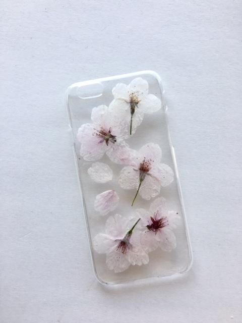iphone7/6/6S  さくらの押し花スマホケース