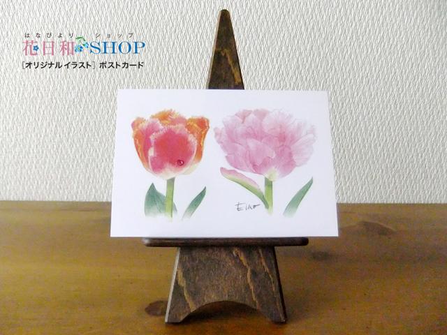 Tulip●マイアミサンセット・アンジェリ...