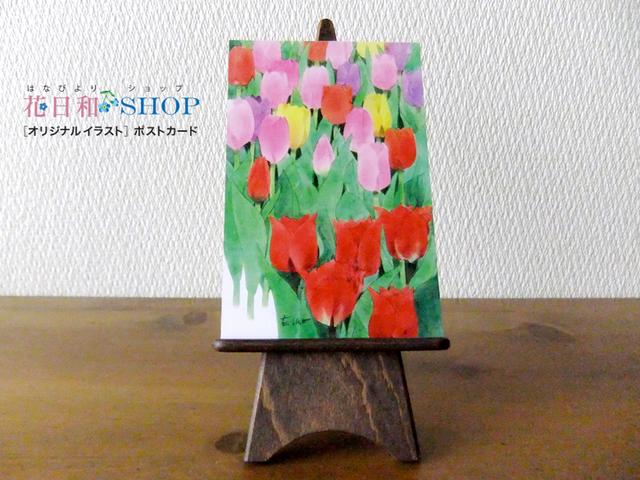 Tulip Garden◆Tonami |ポストカード 2...