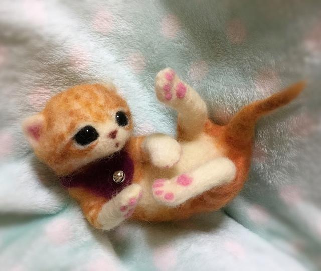 オレンジの子猫しゃん