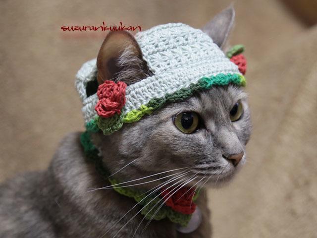 【猫用】帽子とMAY首輪 バラ付きセ...