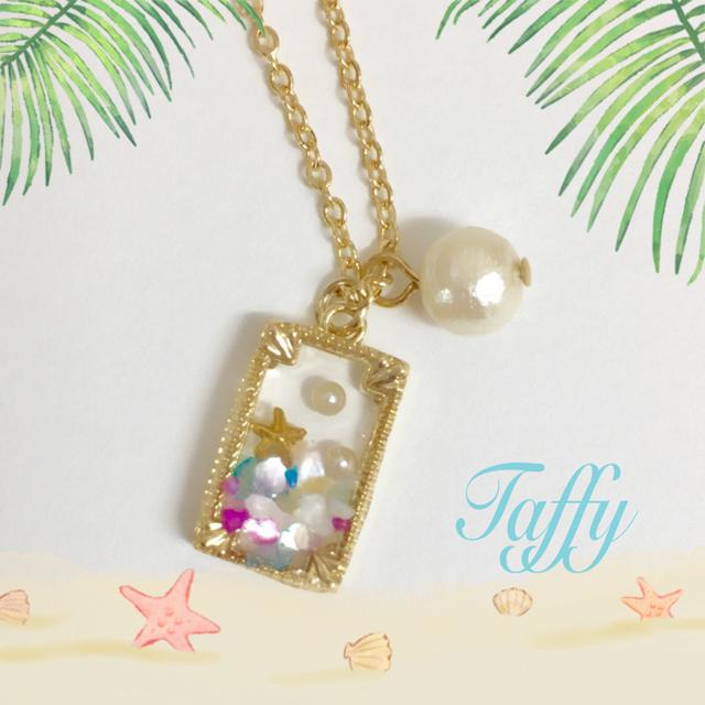 SALE★送料無料!! Taffy  シェルフレー...