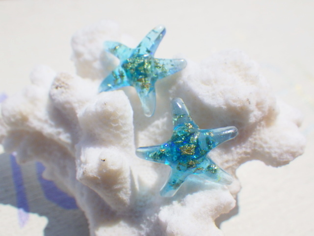 Starfish in the sky  ヒトデのピアス??...