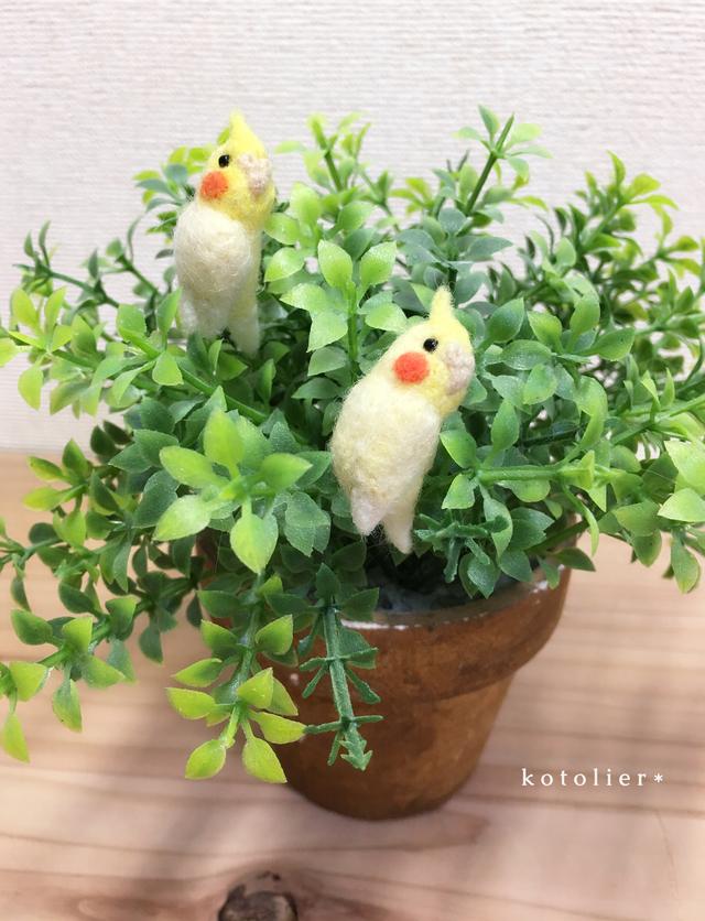 【柴わんこさま】鳥 イヤホンジャック ...