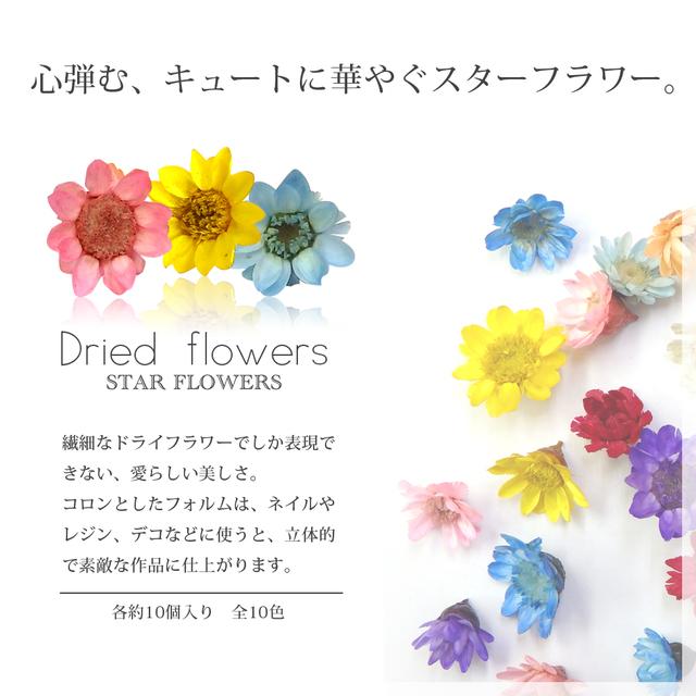 【09 ライム】生花を使用したスター...
