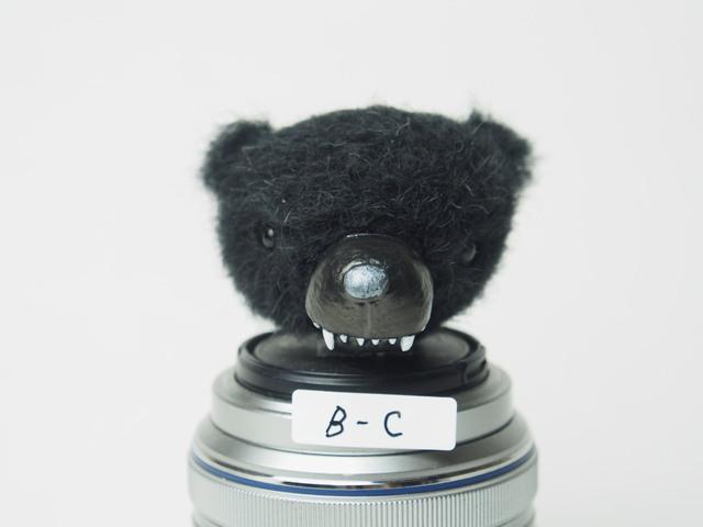 牙くまヘッド(ブラック)C