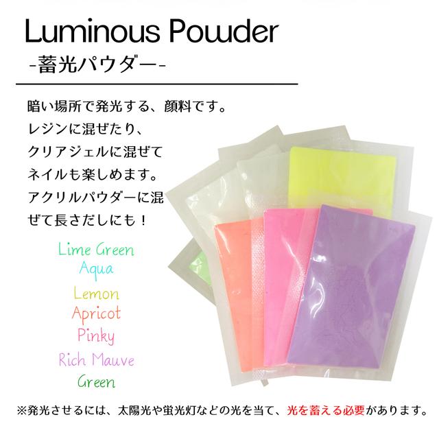 【アプリコット】 蓄光 ルミナスパウダー