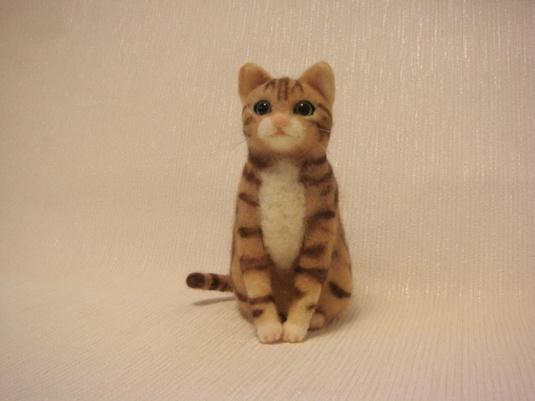 アメショ風 ぽっちゃり猫